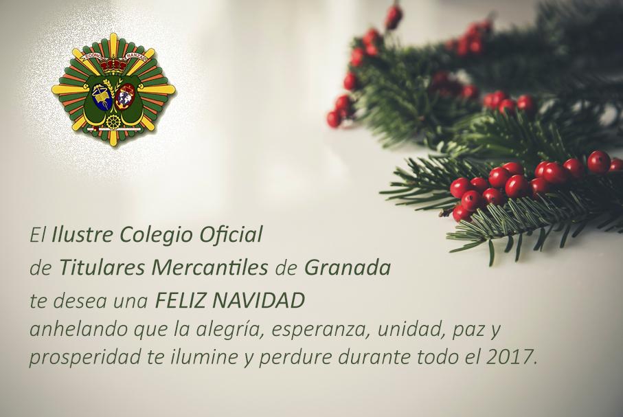 felices-fiestas-cotime-granada-2016